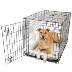 Honden en alleen blijven